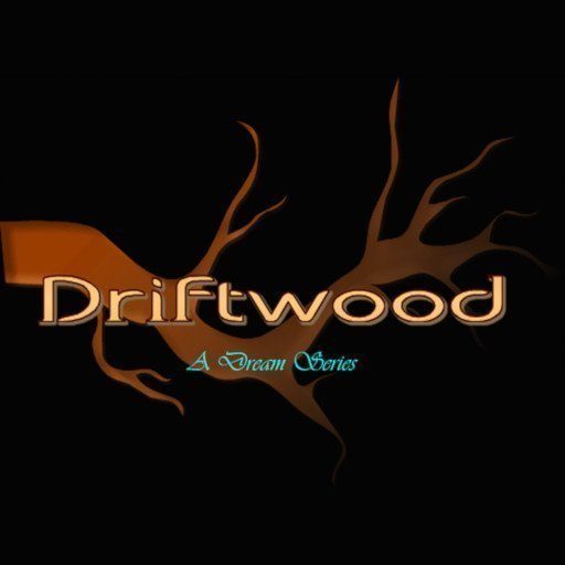 Driftwood Event - New Years Magic - January 2020