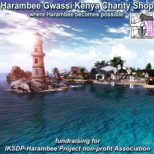 Harambee Gwassi-Kenya Charity Shop