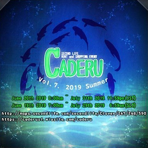 CADERU Summer - June / July 2019