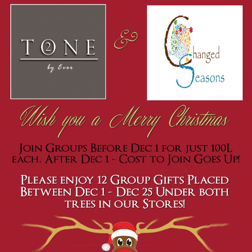 TONE 2 & Changed Seasons - 24 Christmas Group Gift Grab