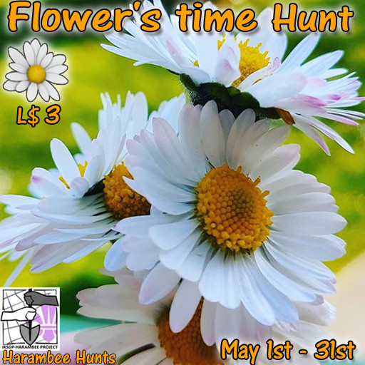 Harambee Flower's time Hunt - May 2020