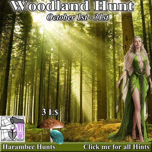 Harambee Woodland Hunt October 2020