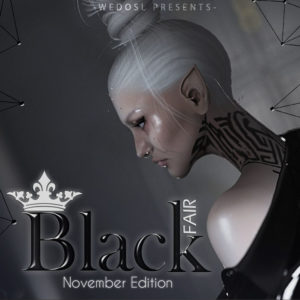 The Black Fair November 2020 Sign
