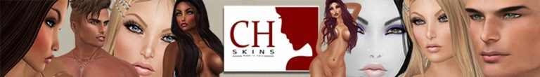The CH Skins Banner