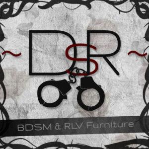 The DsR Logo