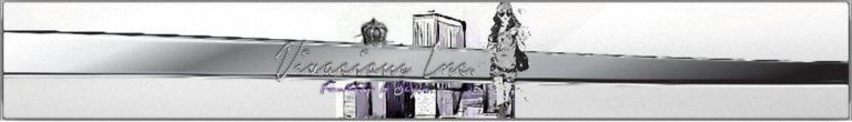 The Vivacious Inc Banner