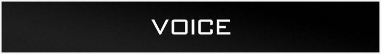 The VOICE Store Banner